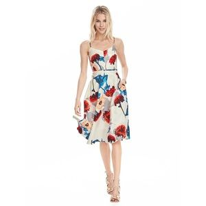 Banana Republic Strappy Floral Fit and Flare Dress